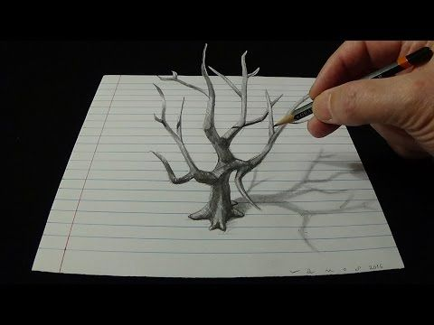 Art 3d drawing old tree how to draw 3d tree youtube