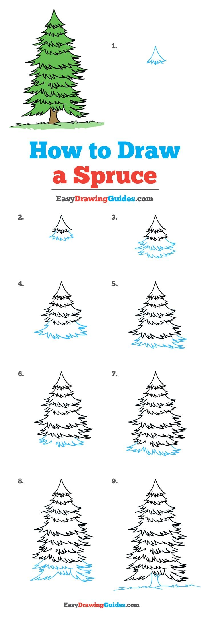 How to Draw a Spruce Drawing tutorials for kids, Trees
