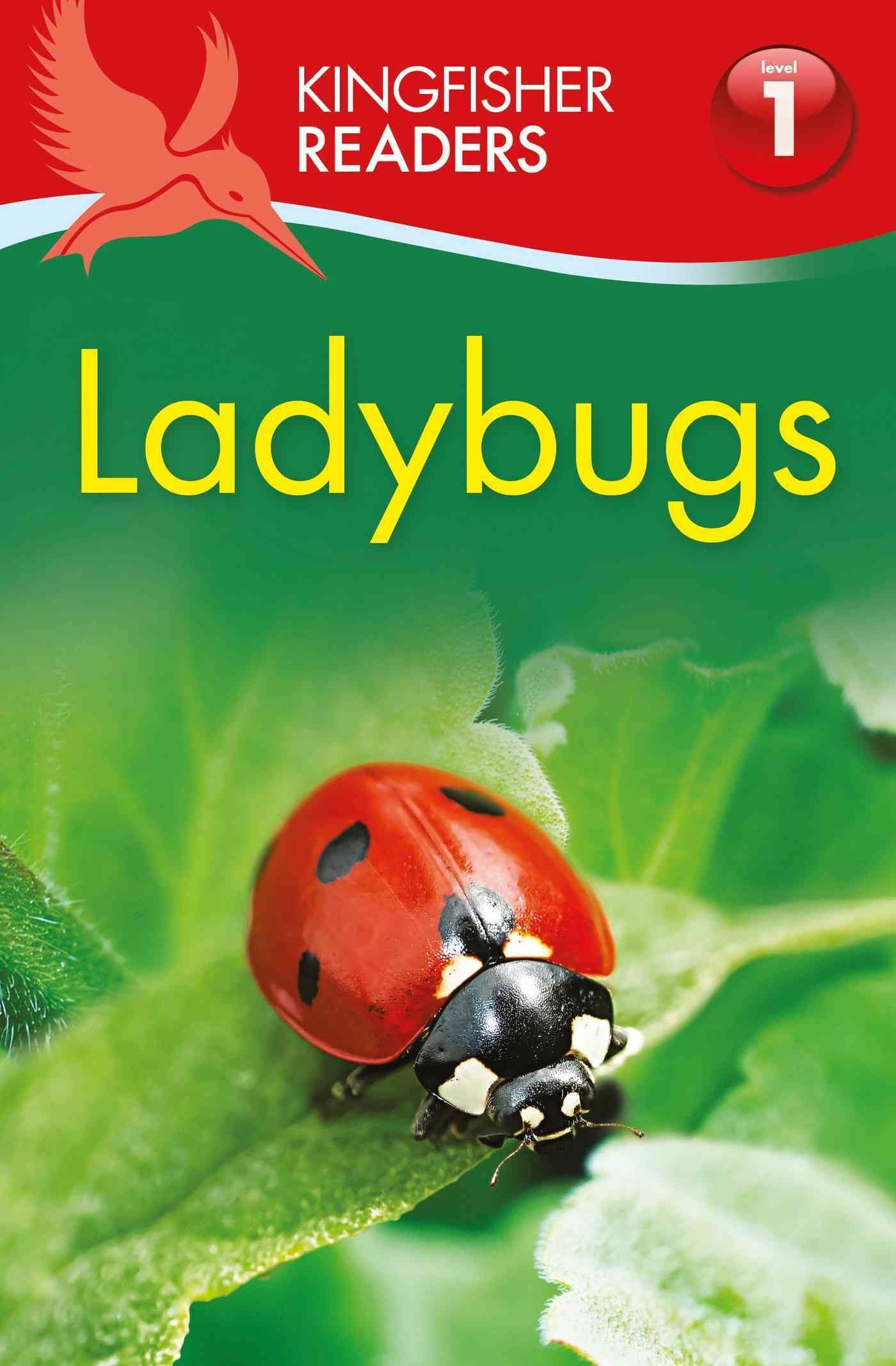 lifecycle of a ladybird