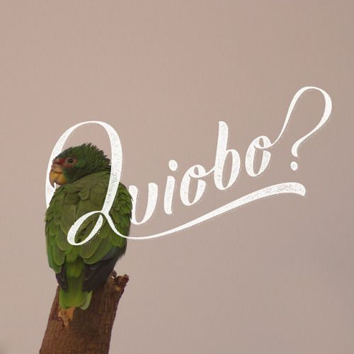 M&TC: Quiobo??? Sonora stylePhoto: @lale_sr (via pascualredmen)