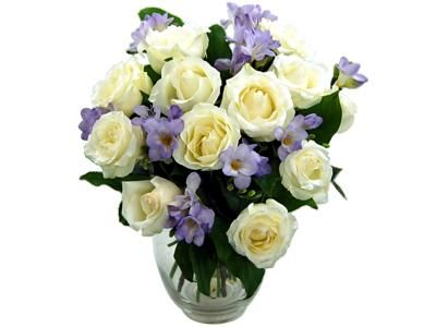 Image result for next flowers