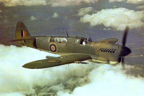 Fairey Firefly F1 of the Fleet Air Arm.