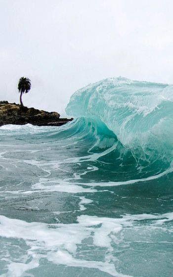 http://media-cache-ak0.pinimg.com/originals/5d/29/16/5d2916bcbac6d6700c581f9137e62d1c.jpg, Waves, Palm Tree, CLear, Blue, Ocean, Sea