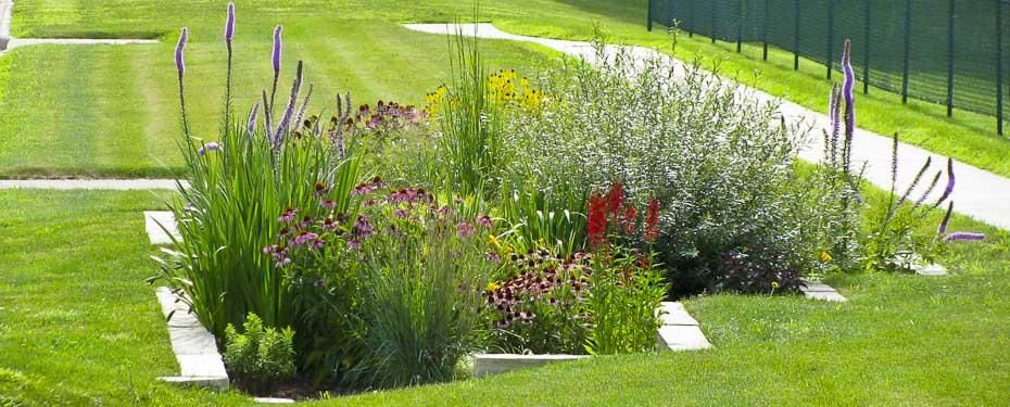 Iowa landscaping ideas forever green coralville iowa for Rain garden design