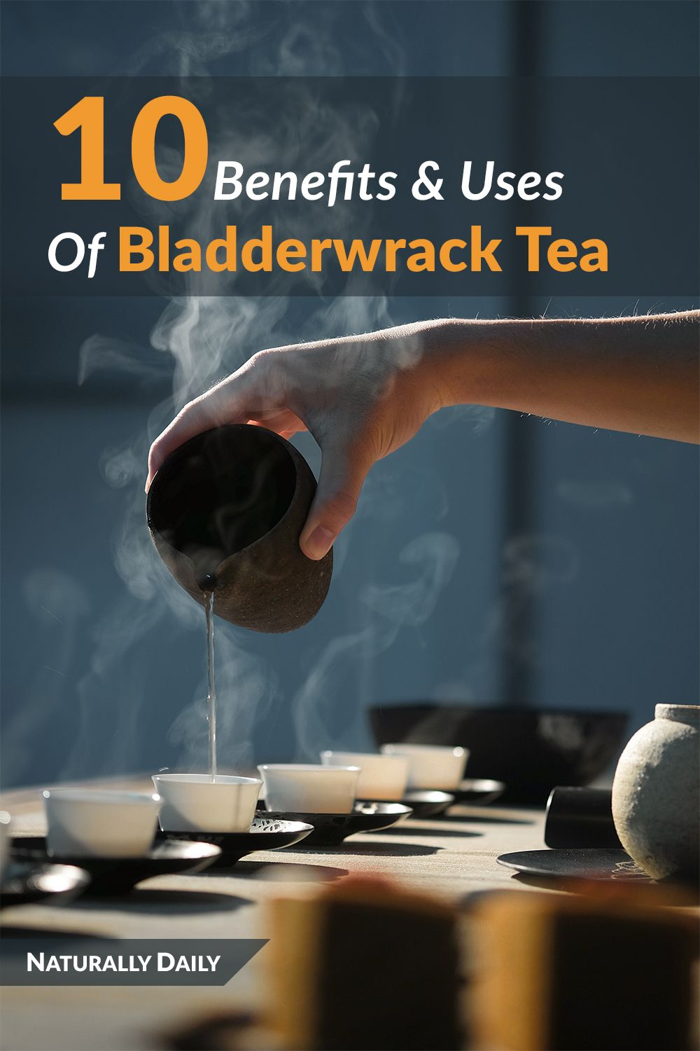 Bladderwrack seaweed and tea benefits and uses for health
