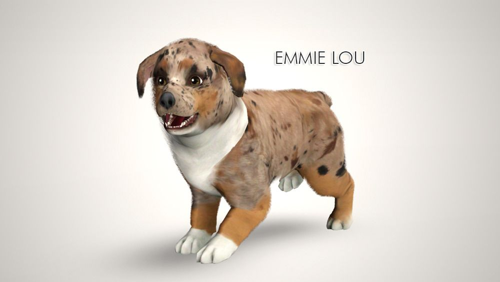 Emmie Lou Request Little Aussie Puppy For An Anon Download Sim Format You Will Need The Following Cc For Her To Appear Th Sims Pets Sims 4 Pets Sims Funny