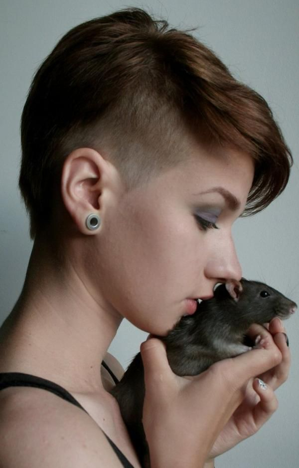 Astonishing 1000 Images About Haircut Ideas On Pinterest Pixie Cuts Short Hairstyles Gunalazisus