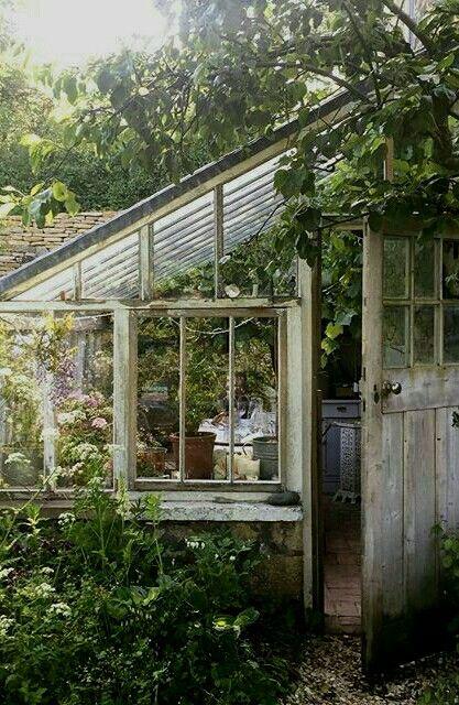 Greenhouse | Green with Ivy | Pinterest | Verrière, Serre et Jardins