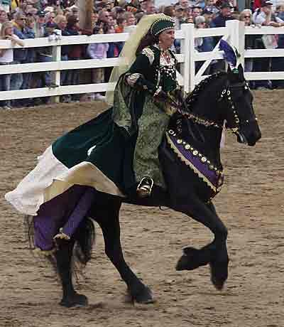 Friesian05GreenPurpleCostume
