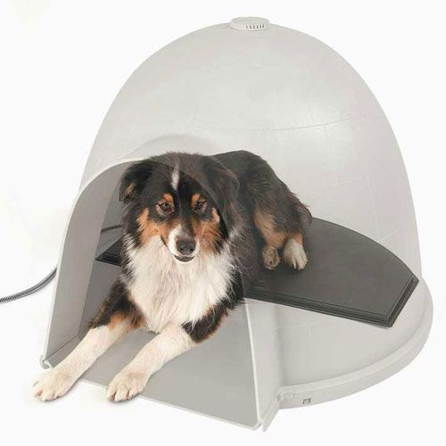 Heated Dog Beds Brrr No Pull Pups Heated Dog Bed Heated Pet Beds Dog House