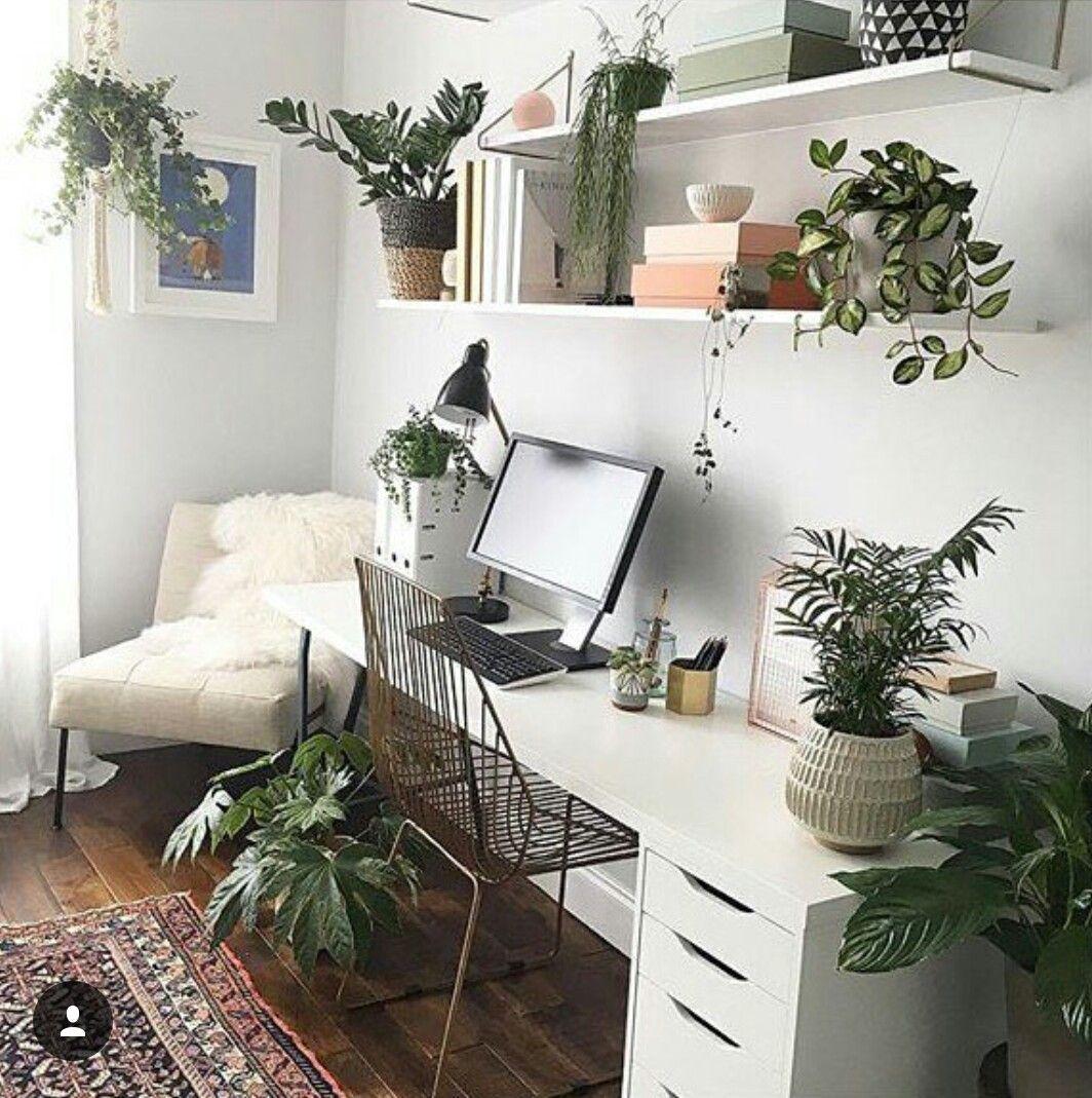 Pin von Lori Munoz auf houseplants   Pinterest   Arbeitsplätze ...