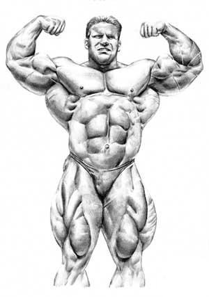 Jay Cutler Workout Routine   WannaGainBIG com   Bodybuilding