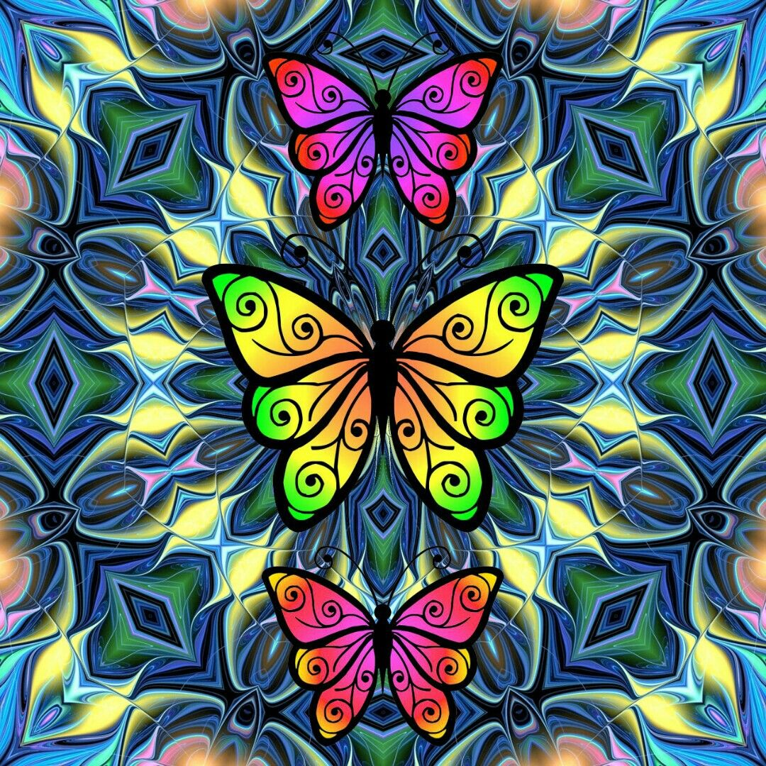 DesertRose,;,sweet butterflies,;,   Butterfly wallpaper ...