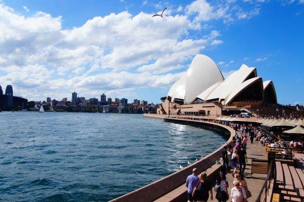5d2e2d2b25df03a47fd64d5c8c67e615 - Sydney Opera House To Botanic Gardens Walk