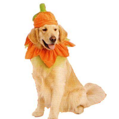 Dog Pumpkin Costume With Hat Xl Xxl 14 99 Golden Retriever Halloween Costumes Pet Costumes Dog Pumpkin