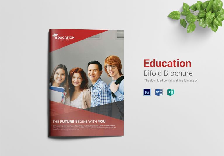 Higher Educational Brochure Template $21 Formats Included  MS - ms word pamphlet template