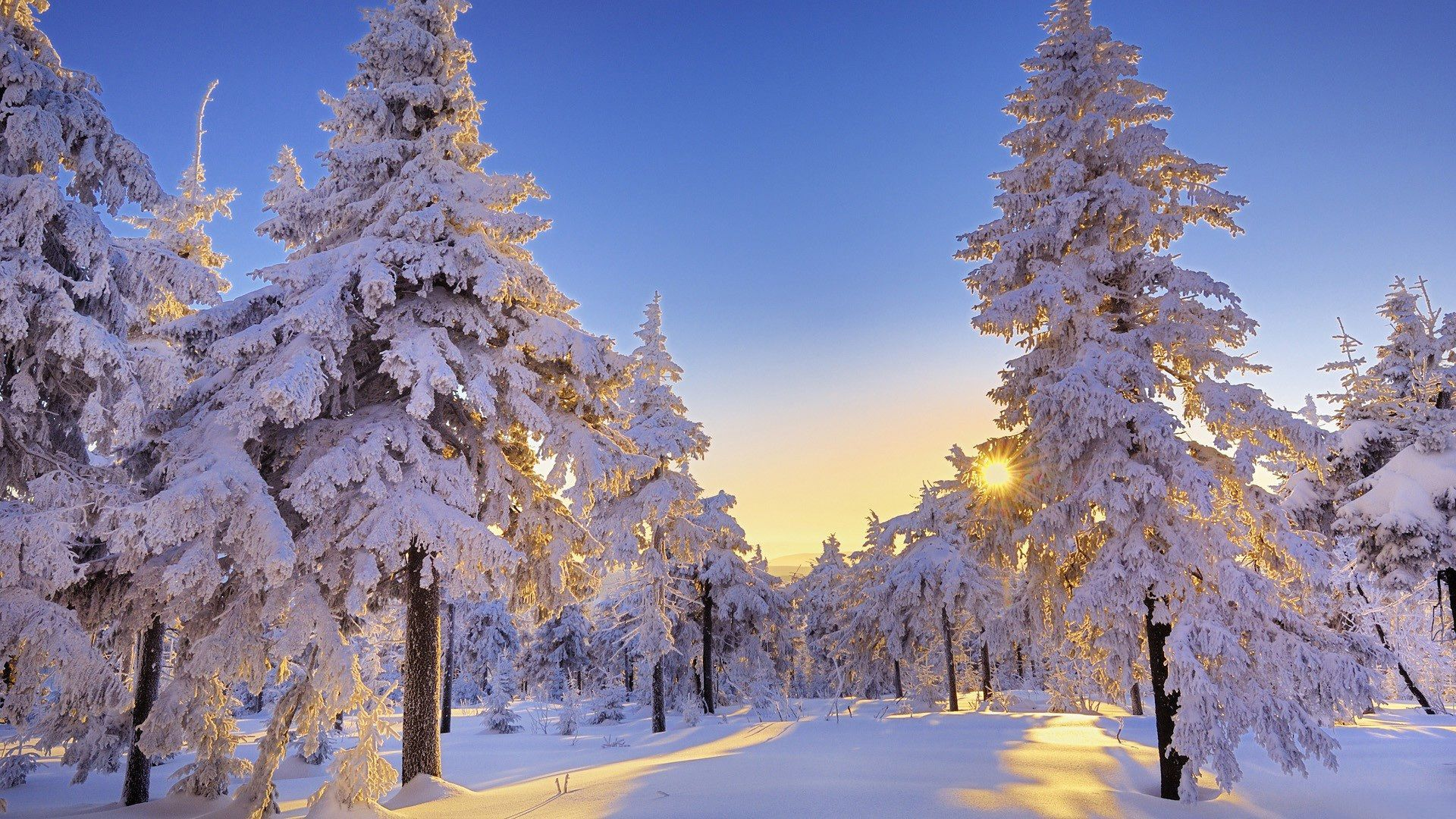 Winter Wonderland A Poem Winter Snow Wallpaper Winter Landscape Winter Wallpaper