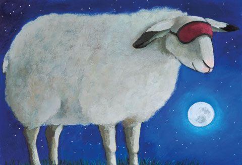 Großansicht Schaf mit Schlafmaske