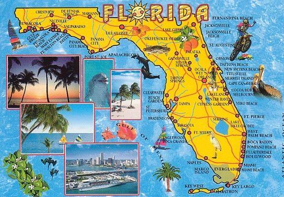 15 Cities In Florida That You Need To Visit Florida Getaway Florida Travel Palm Bay Florida