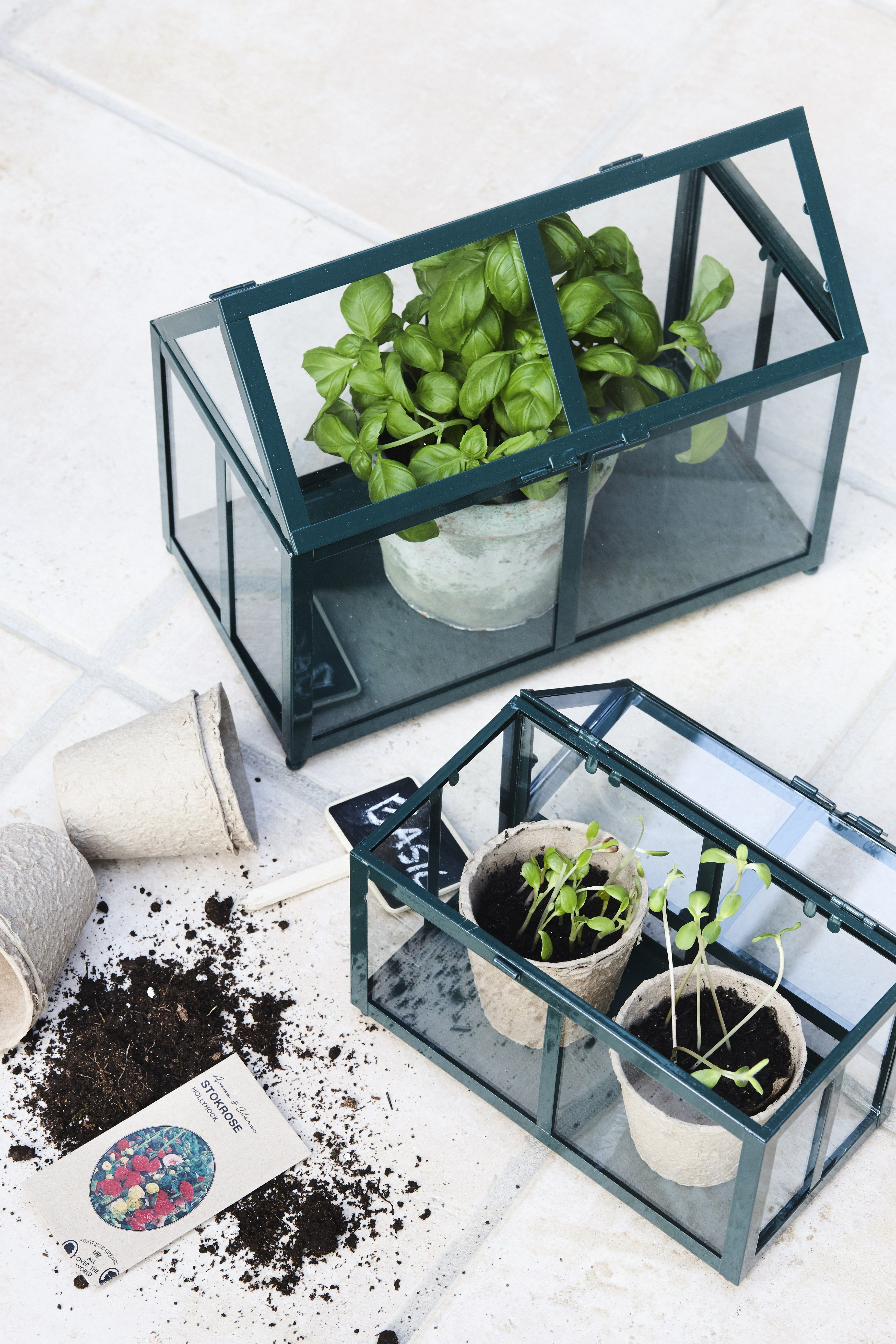 DIY - Decorative greenhouse by Sostrene Grene. Click at the picture for tutorial.