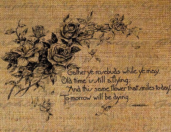 gather your rosebuds while ye may meaning