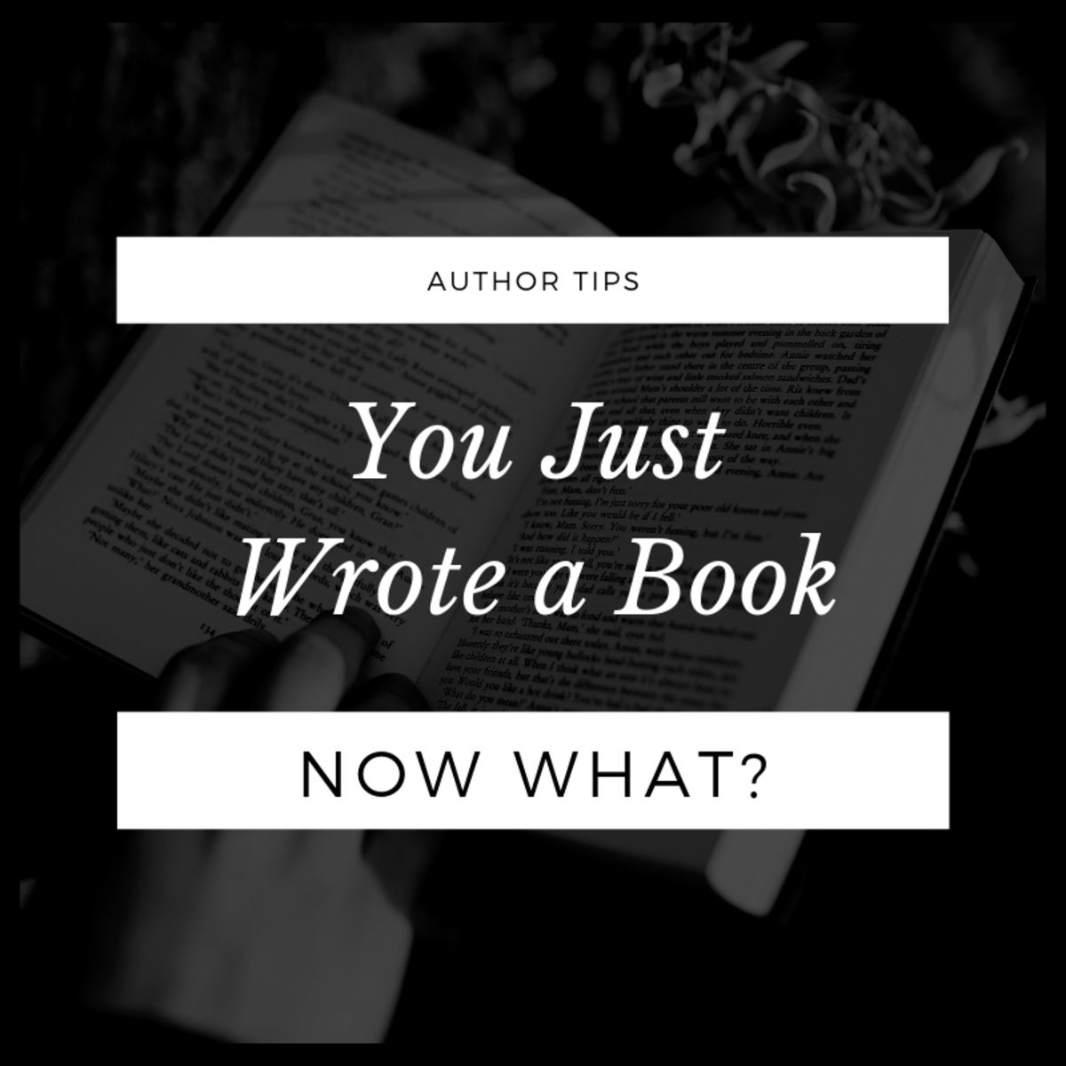 You Just Wrote A Book Now What My Friend Has Just Finished Her Book What Should She Do Next To Get A Book Deal From A Writing A Book Novel Writing