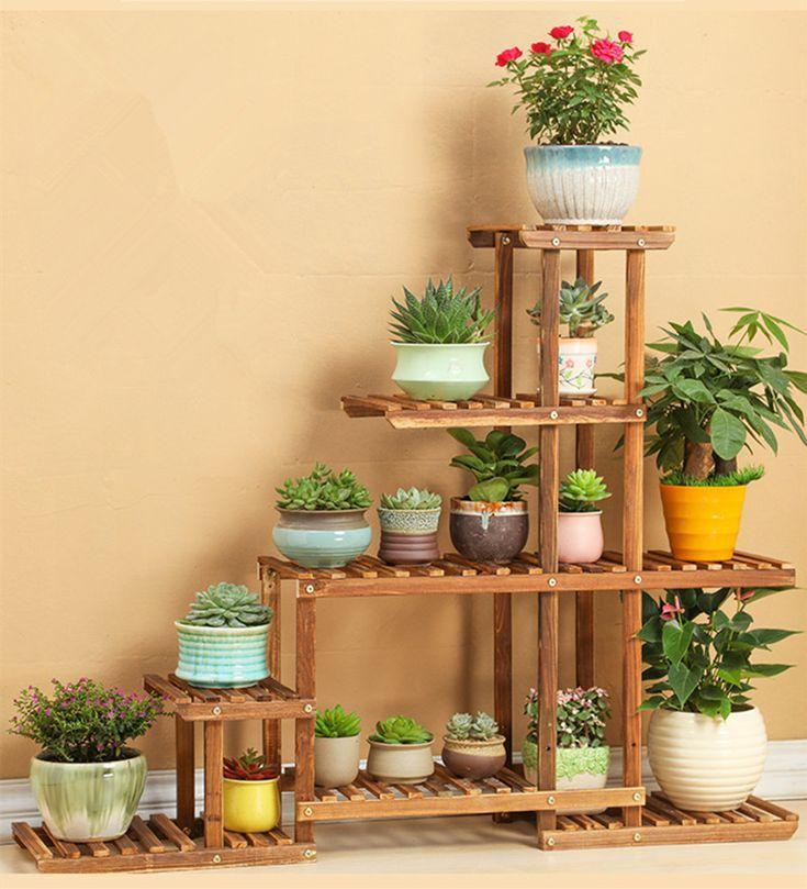piante d'appartamento -   Piante d'appartamento, Piante ...