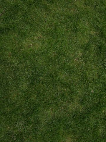 Photoshop Tutorial: How to create a tileable grass textures with the