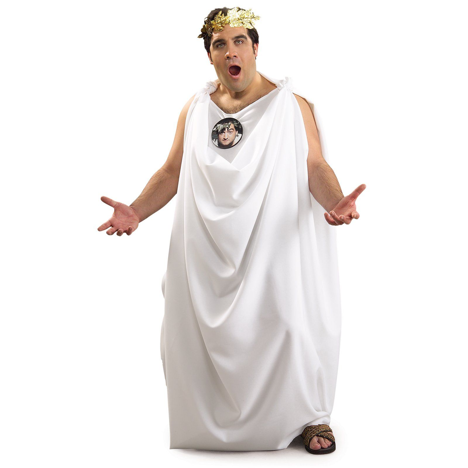 Toga party is a costume party in which party goers wear toga ...