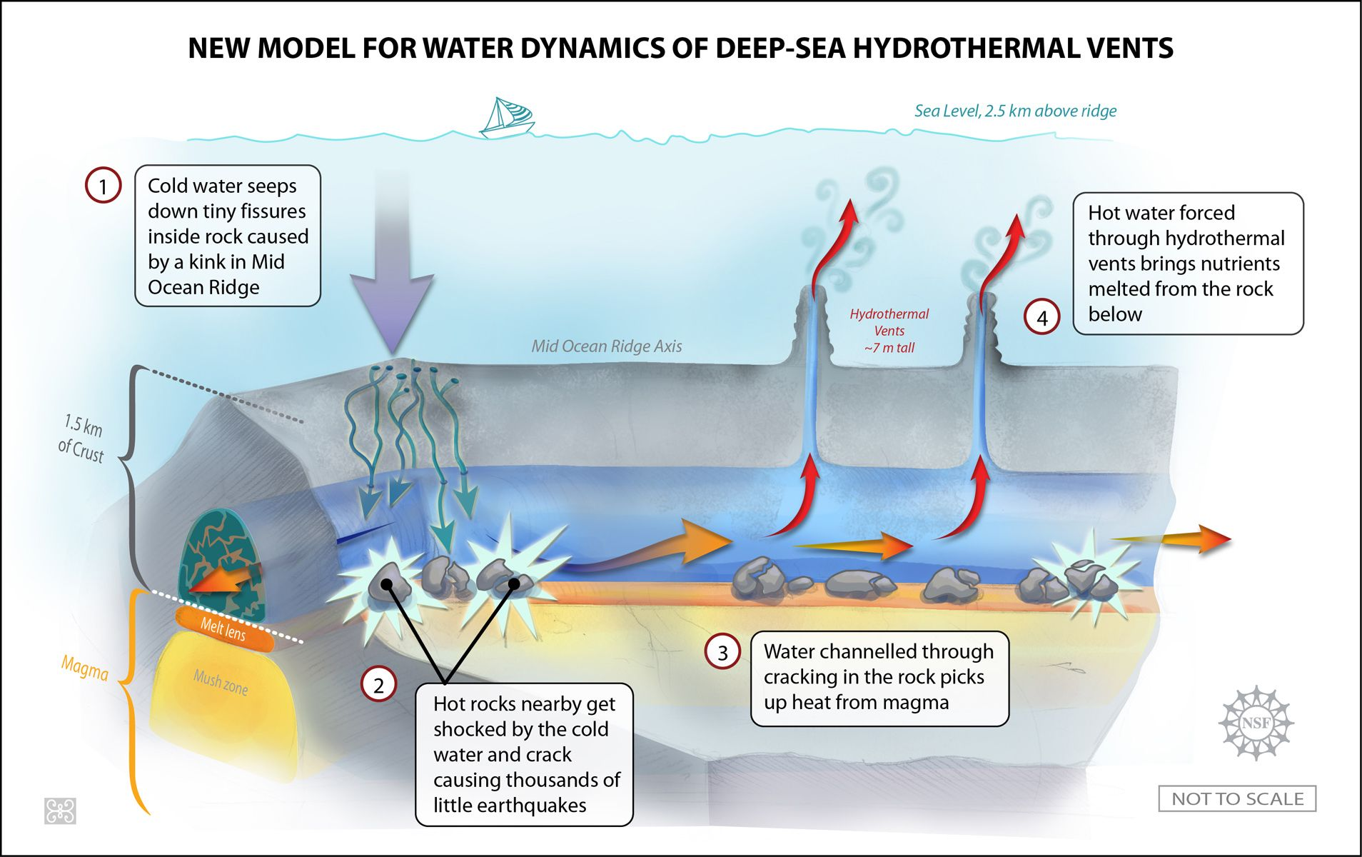 New Model For Water Dynamics Of Hydrothermal Vents