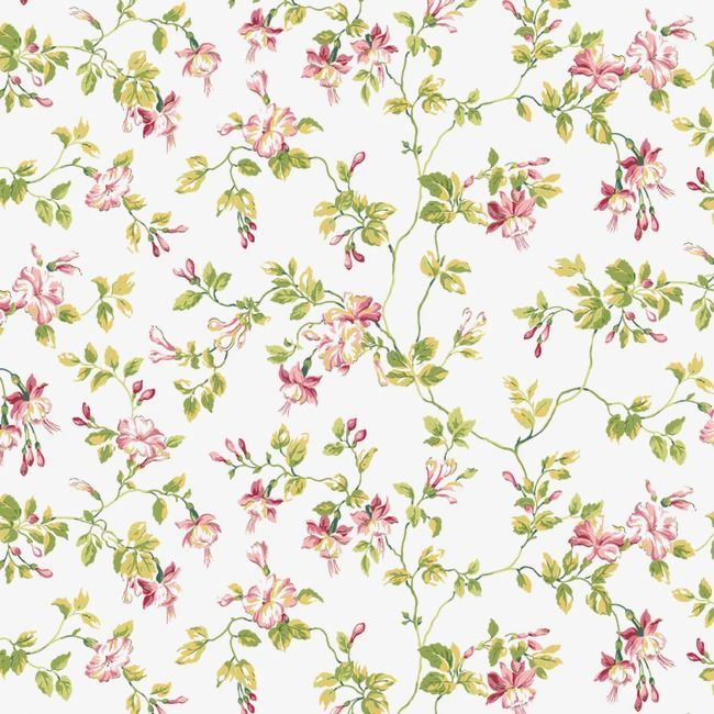 Floral Background Shading High Resolution Images Frame Png