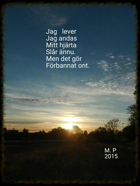 dikt om saknad och sorg