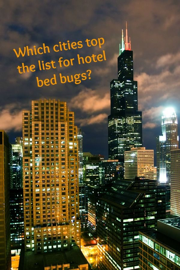 Hotel Bed Bugs Cities that top the list for bed bugs