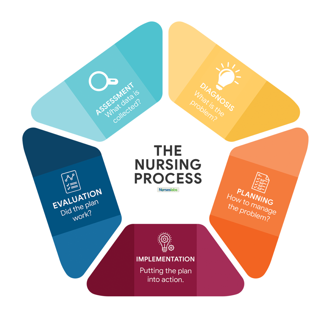 Nursing Diagnosis: Everything You Need to Know [2020 Guide ...