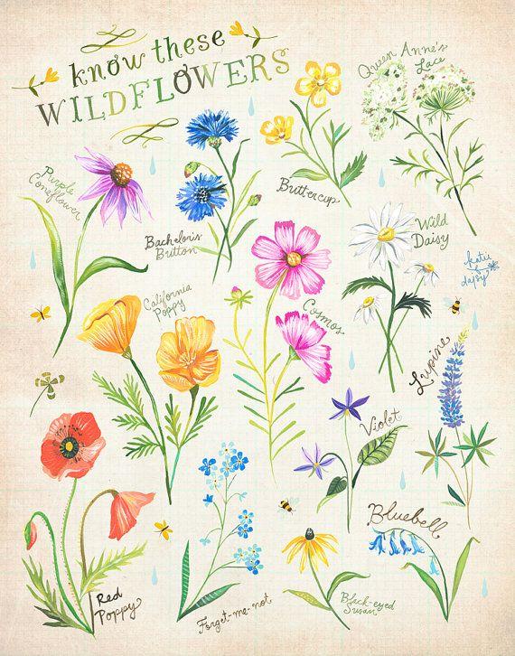 Wissen diese Wildblumen drucken Katie Daisy Kunst Aquarell