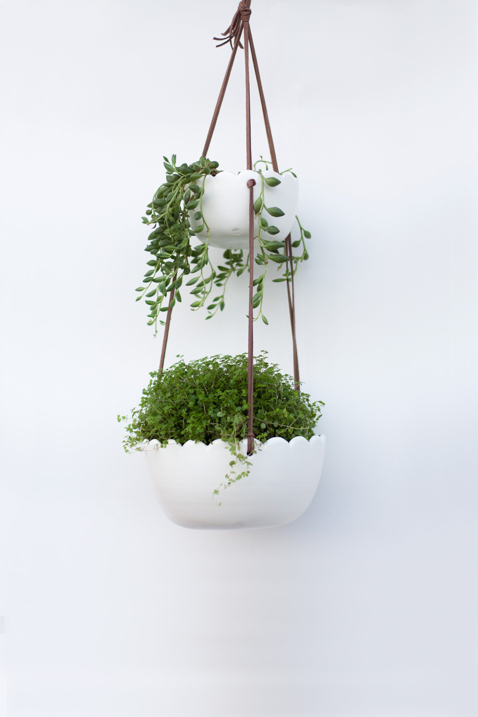 Double ceramic hanging planter indoor wall planter plant
