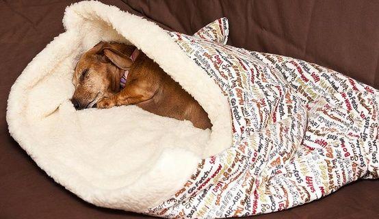 Diy Burrow Dog Bed Sewing Pattern Tutorial Dog Sewing Patterns Cat Bed Pattern Diy Cat Bed