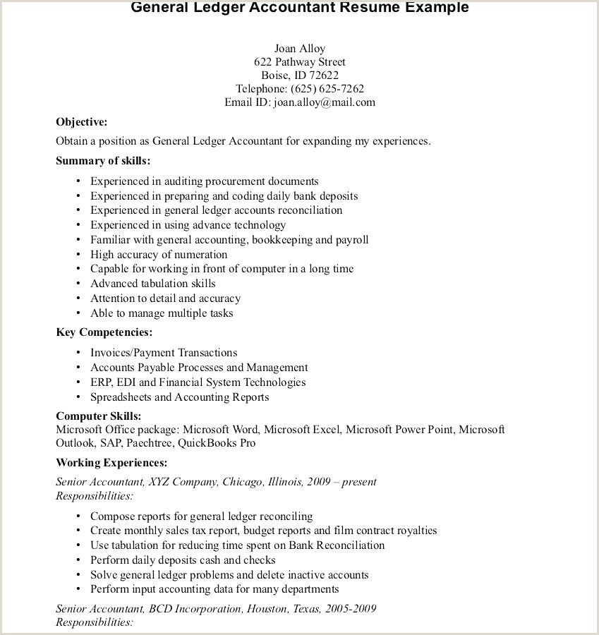 Latest Cv Format For Accountant Free Download Latest Cv