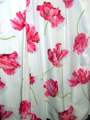 tulipany manuel canovas