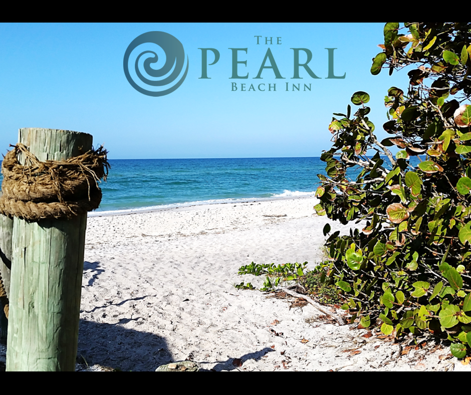 Join us at our beach paradise on Manasota Key Florida ...