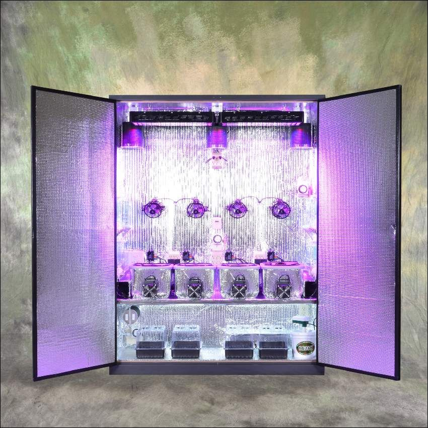 Grow Tent Vs. Grow Box Which Is Better? u2013 Zenpype & Grow Tent Vs. Grow Box: Which Is Better? u2013 Zenpype | Articles ...