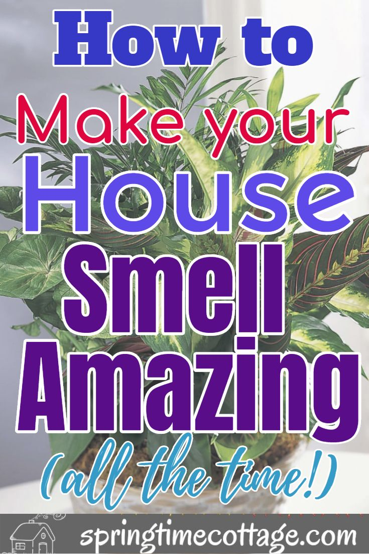 How to make your house smell amazing all the time
