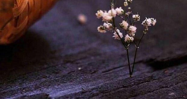 خلفيات واتس اب جديده روعة رمزيات واتس كتابية ميكساتك Girly Pictures Flowers Photo