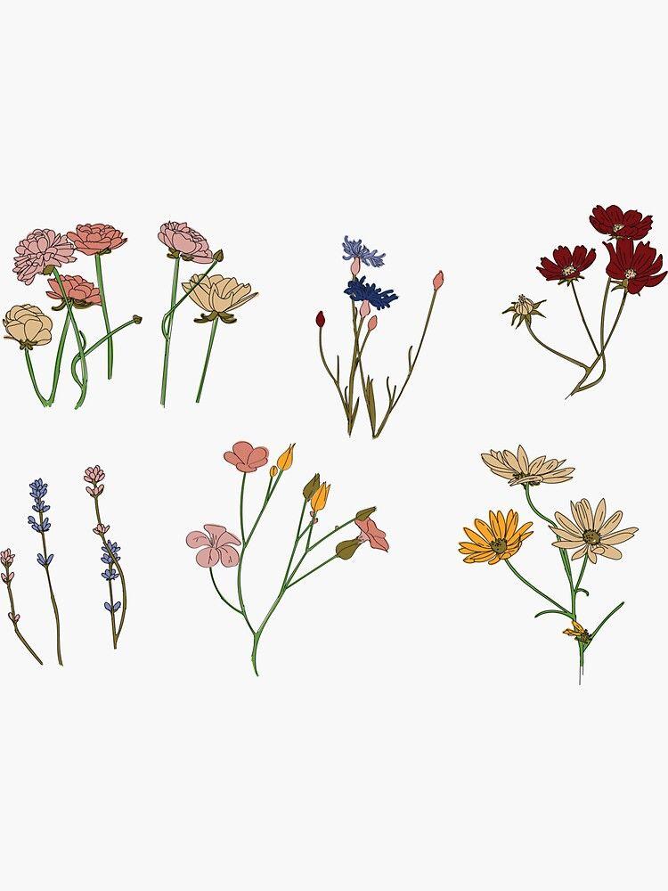 Aesthetic Flower Drawing