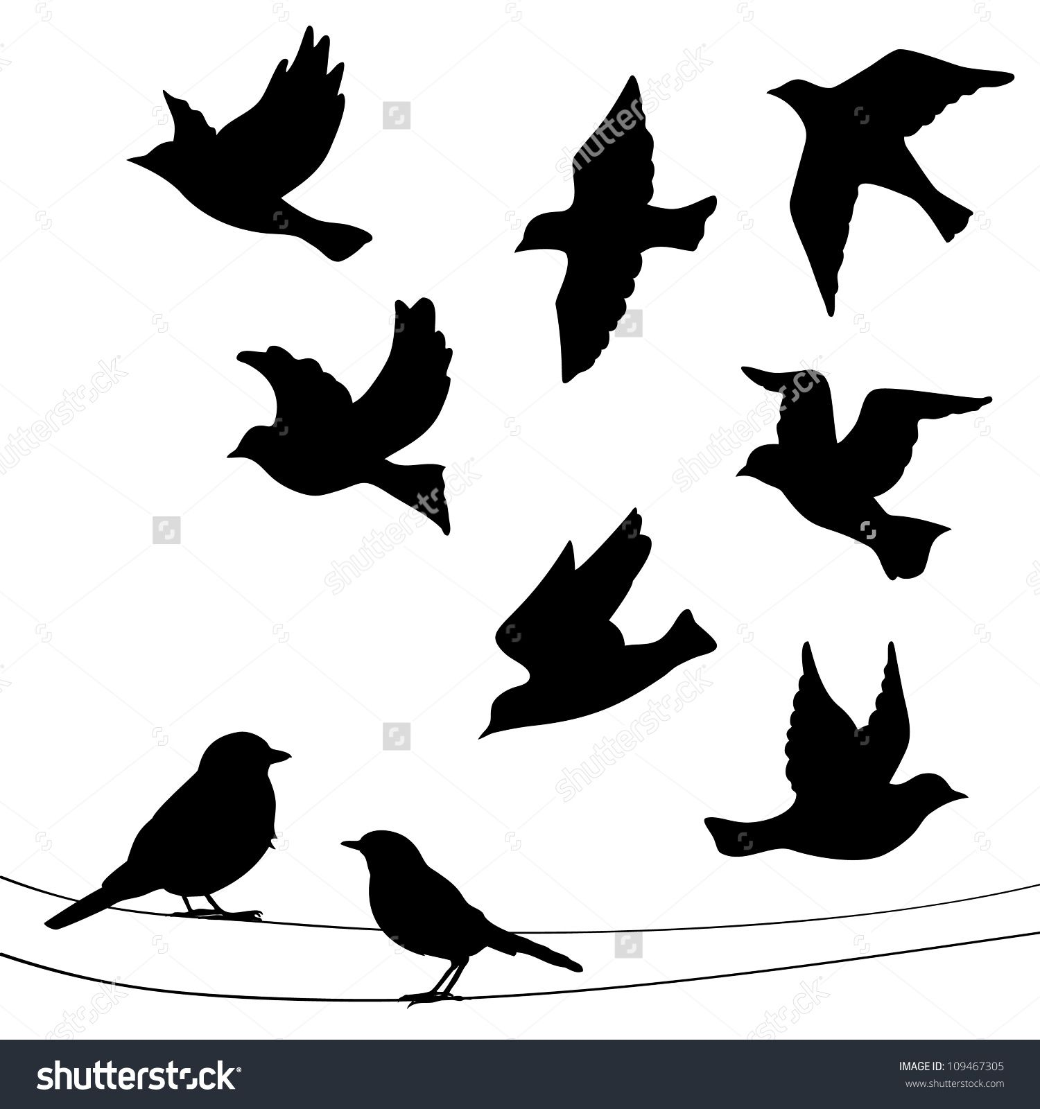 stock vector set of birds silhouettes flying sitting