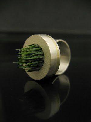 anell de gespa