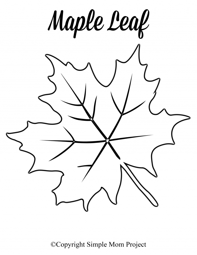 Free Printable Large Leaf Templates, Stencils and Patterns ...