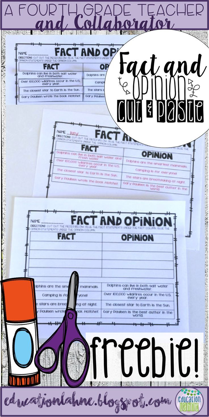 A Resource at Your Fingertips!   Fact and opinion worksheet [ 1464 x 736 Pixel ]