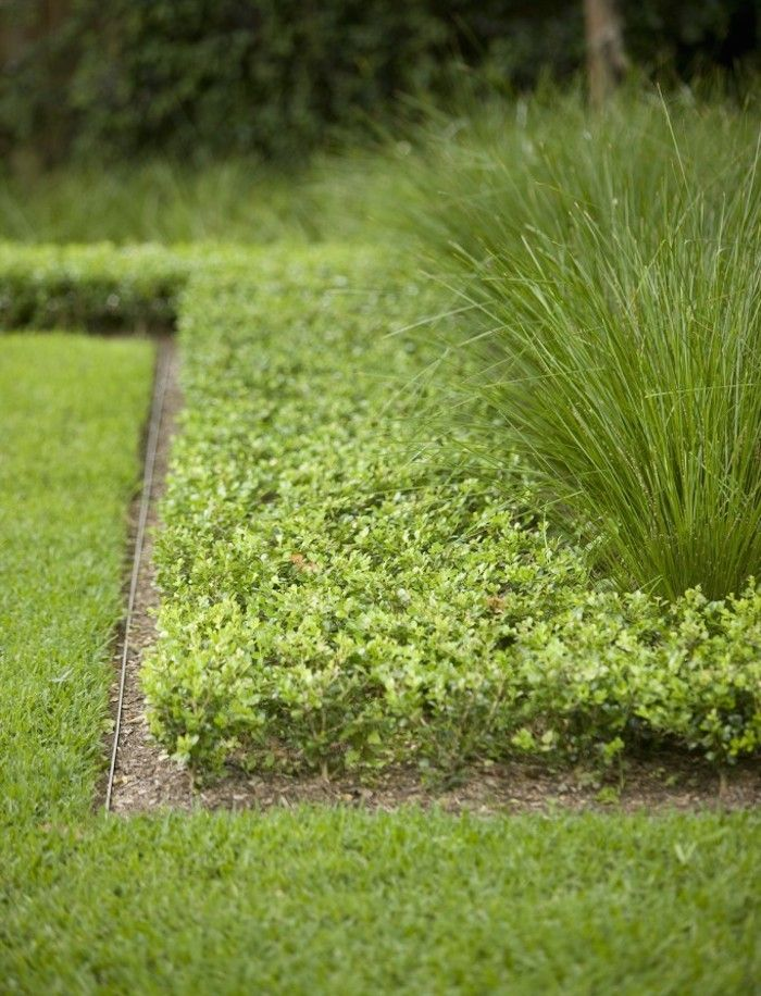 Hardscaping 101 Metal Landscape Edging Metal landscape