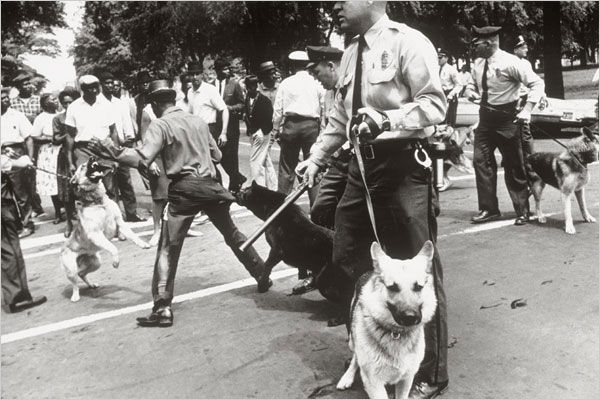 Police Dogs Attack Demonstrators Photo Credit Charles Moore
